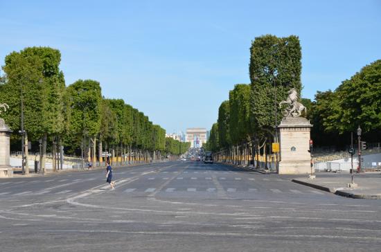 Avenue des Champs Eysées
